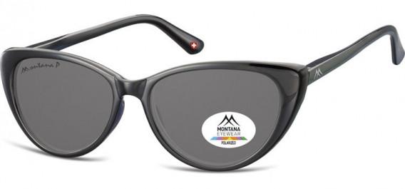 SFE-10617 sunglasses in Black/Smoke Lenses