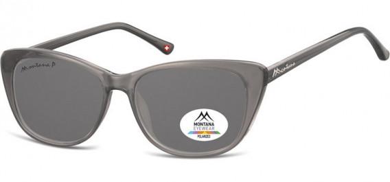 SFE-10616 sunglasses in Grey/Smoke Lenses