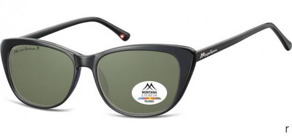 SFE-10616 sunglasses in Black/G15 Lenses