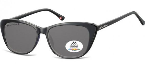 SFE-10616 sunglasses in Black/Smoke Lenses