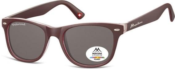 SFE-10614 sunglasses in Burgundy/Smoke Lenses