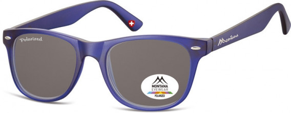 SFE-10614 sunglasses in Blue/Smoke Lenses