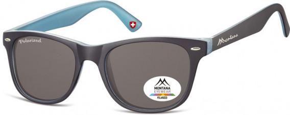 SFE-10614 sunglasses in Blue/Light Blue/Smoke Lenses