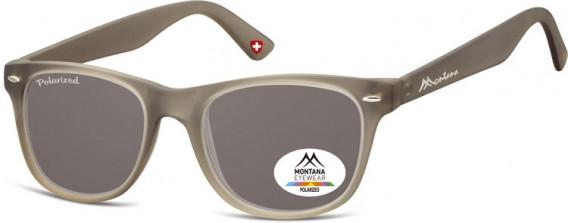 SFE-10614 sunglasses in Grey/Smoke Lenses