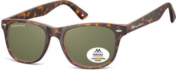SFE-10614 sunglasses in Turtle/G15 Lenses