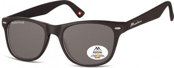 SFE-10614 sunglasses in Black/Smoke Lenses