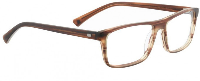 Entourage of 7 BRADLEY Glasses in Brown