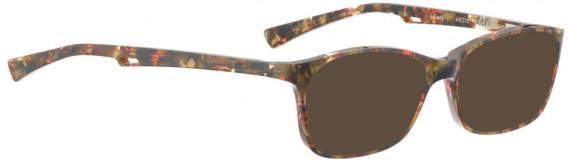 BELLINGER EASY sunglasses in Brown Pattern