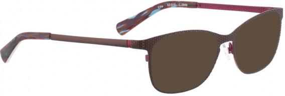 BELLINGER ELLIE sunglasses in Brown