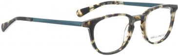 BELLINGER FUGU glasses in Black Pattern