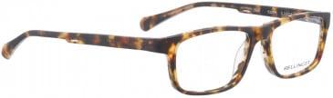 BELLINGER DASH glasses in Brown Pattern