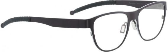 ENTOURAGE OF 7 TORRANCE glasses in Purple