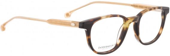 ENTOURAGE OF 7 REDLANDS glasses in Brown
