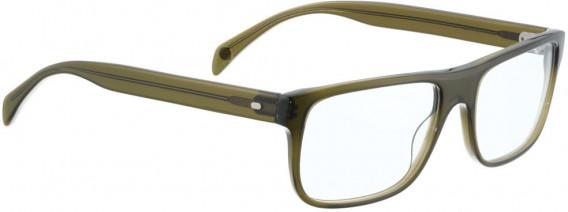 ENTOURAGE OF 7 MOE glasses in Green Brown