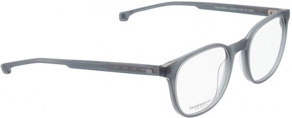 ENTOURAGE OF 7 HANK-SKXL glasses in Matt Grey Transparent