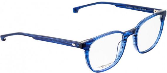 ENTOURAGE OF 7 HANK-SKXL glasses in Blue