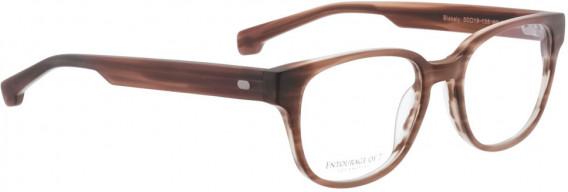 ENTOURAGE OF 7 BLAKELY glasses in Light Brown Matt