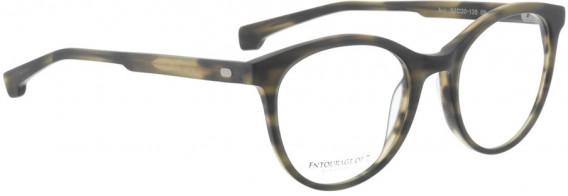 ENTOURAGE OF 7 AVY glasses in Havana