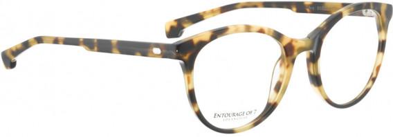 ENTOURAGE OF 7 AVY glasses in Tortoise
