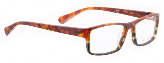 BELLINGER STRIKE glasses in Light/Dark Havana