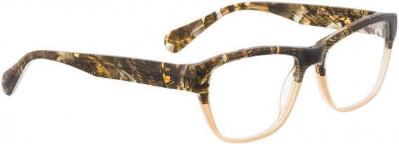 BELLINGER NOVA glasses in Brown
