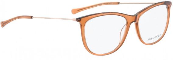 BELLINGER LESS1816 glasses in Brown Transparent