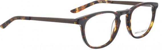 BELLINGER KOI glasses in Tortoise