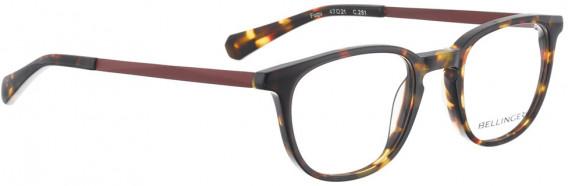 BELLINGER FUGU glasses in Tortoise