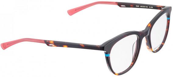 BELLINGER CHILL glasses in Brown