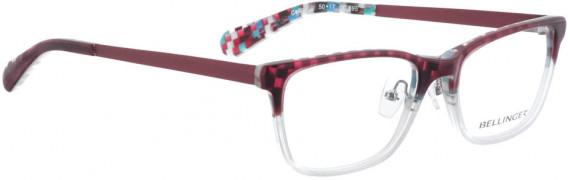 BELLINGER CELLO glasses in Purple-White
