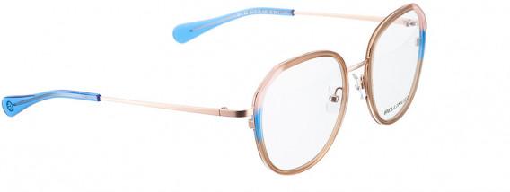 BELLINGER ARC-X2 glasses in Brown Transparent