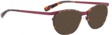 BELLINGER CIRCLE-8 sunglasses in Tortoiseshell Purple