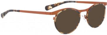 BELLINGER CIRCLE-7 sunglasses in Orange Brown