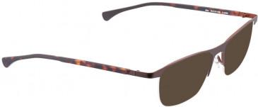 BELLINGER AIM sunglasses in Grey
