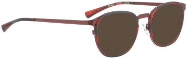 BELLINGER CIRCLE-X sunglasses in Gold