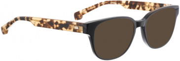ENTOURAGE OF 7 BLAKELY sunglasses in Dark Brown Matt