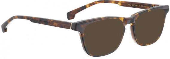 ENTOURAGE OF 7 ALLY sunglasses in Dark Tortoise