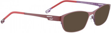 BELLINGER VOSS-1 sunglasses in Pink/Purple