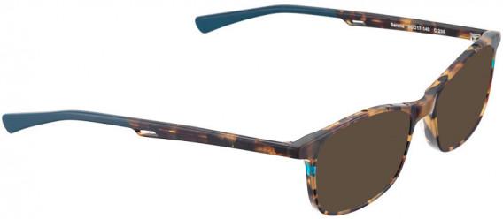 BELLINGER SERENE sunglasses in Brown