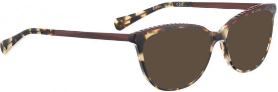 BELLINGER RAMEN sunglasses in Brown Pattern