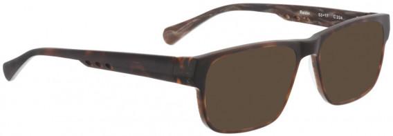 BELLINGER RAIDER sunglasses in Dark Brown