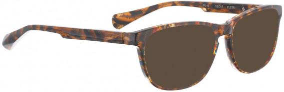 BELLINGER PIT-6 sunglasses in Brown Pattern