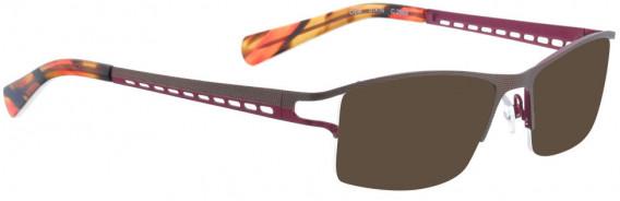 BELLINGER OPAL sunglasses in Brown