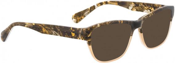 BELLINGER NOVA sunglasses in Brown