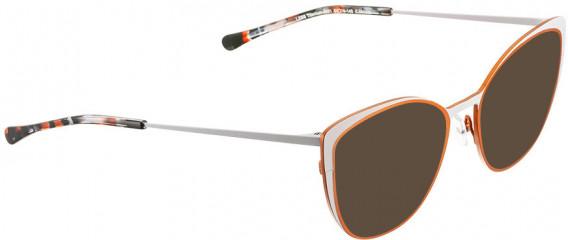BELLINGER LESS-TIT-5981 sunglasses in Matt Copper