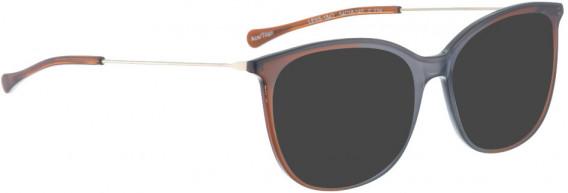 BELLINGER LESS1842 sunglasses in Grey/Brown Transparent