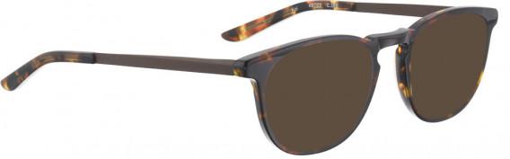 BELLINGER KOI sunglasses in Tortoise