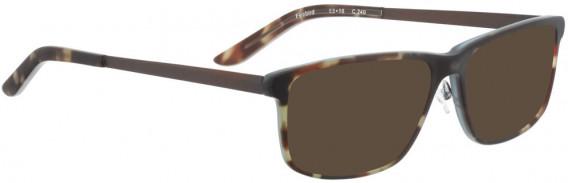 BELLINGER FIREBIRD sunglasses in Brown