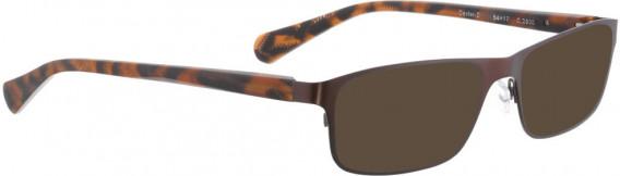 BELLINGER DEXTER-2 sunglasses in Brown