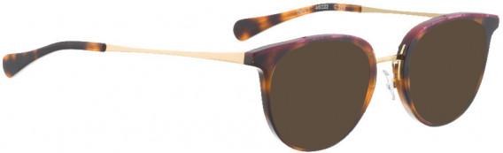 BELLINGER DEFY-1 sunglasses in Havana